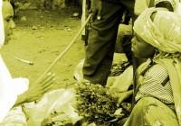 ETIOPÍA: VIAJE AL CORAZÓN DEL MITO