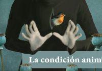 HECHOS DE NUESTRA CONDICIÓN