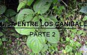 LUISA ENTRE LOS CANÍBALES (ACTO II)